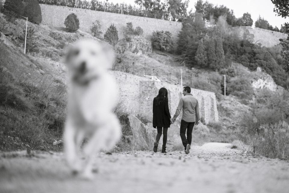 preboda tania y alberto en toledo fotografia pareja amor novios naturaleza perro mascota río tajo fotógrafa milena martinez