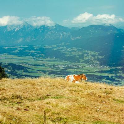 Dreiländeren (Austria)